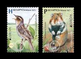 Belarus 2021 Mih. 1407/08 Europa. Fauna. National Endangered Wildlife. Aquatic Warbler And European Hamster MNH ** - Bielorrusia
