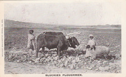 India Postcard Bluchies Ploughmen And Bagpipers Mullick Series - India
