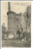En Berry , MEHUN SUR YEVRE , Les Tours Du Château De Charles VII Vues Des Bords De L' Yèvre , 1906 - Mehun-sur-Yèvre