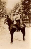Chasseur D'Afrique - Regiments