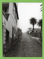 Porto Santo - REAL PHOTO - Aspecto De Uma Rua - Madeira - Portugal - Madeira