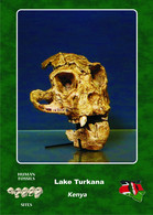 Set 3 Cartes Postales, Prehistoire, Human Fossil Sites, Lake Turkana (Kenya), Afropithecus Kalakolensis - History