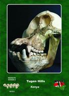 Carte Postale, Prehistoire, Human Fossil Sites, Tugen Hills (Kenya), Equatorius Africanus - History