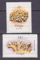 1984Tonga874,886Marine Fauna4,00 € - Marine Life