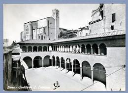 °°° Cartolina - Siena Santuario S. Caterina Viaggiata (l) °°° - Siena