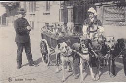 LOT DE  50 CPA  VILLAGES ET VILLES DE FRANCE  VOIR SCAN PLUSIEURS BELLES ANIMATIONS - 5 - 99 Postkaarten