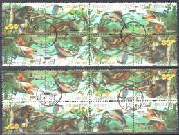 Poland 2004 Flora And Fauna  - Mi 4x4101-04 - 2 Block Of 8  - Combinations - Used - Usati