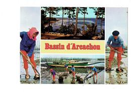 Cpa - 33 - Bassin D'ARCACHON - Scène Ostréicole - Huîtres Bateau - Animation Pêcheurs - Métier - Chatagneau N 7016 - Fischerei