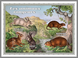 TOGO 2021 MNH Gnawing Animals Nagetiere Animaux Rongeurs S/S - OFFICIAL ISSUE - DHQ2117 - Rodents