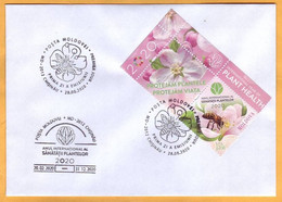 2020 Moldova Moldavie Private FDC UNO: 2020 - International Year Of Plant Health, Insectes , Flowers , Bees - Bienen