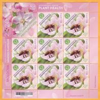 2020 Moldova Moldavie UNO: 2020 - International Year Of Plant Health, Insectes , Flowers , Bees Sheet - Bienen