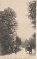 CPA 58 (Nièvre) SAINT BRISSON / EN MORVAN / LA ROCHE DU CHIEN / ANIMEE - Otros Municipios