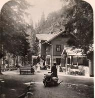 AK-0498/ Riesengebirge Spindelmühle Mädelstegbaude Schlesien Stereofoto Ca.1905  - Stereoscopic