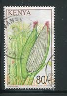 KENYA- Y&T N°740- Oblitéré - Kenya (1963-...)