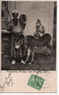 Performing Monkey And Donkey, CAIRO - El Cairo