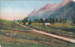 Alta Valle Camonica. Strada Del Tonale, Cime Monticelli Viaggiata 1937 - Brescia