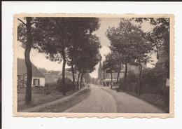 's Gravenwezel : Dorp Kerkstraat - Schilde