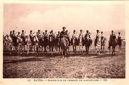 Spahis Algériens Sur Le Terrain De Manoeuvres En Afrique Du Nord Avant La Guerre De 1914 - Regiments