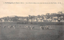 SAINTE RADEGONDE Près Tours - Les Villas Du Côteau - Très Bon état - Sonstige Gemeinden