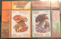 Belarus, 2008, Mi: 720/21 (MNH) - Hongos