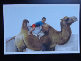 Mongolia - Camel, Kameel, Chameau / Better To See It Once, Than Hear It Thousand Times --> Unwritten - Otros
