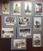 11 Postcards Lot RPPC Singapore Malaysia Historic Sites Churches Fruit Trees Sunsets 1924 On Album Pages - Singapore