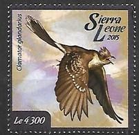 Sierra Leona - MNH ** 2015 :    Great Spotted Cuckoo    Clamator Glandarius - Kuckucke & Turakos