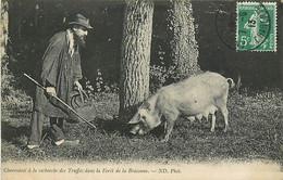 16 , Charentais A La Recherche Des Truffes Dans La Foret De La Braconne , * 443 76 - Unclassified