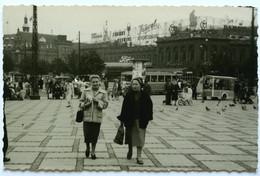 COPENAGHEN (DANIMARCA) 1952 ? Piazza Del Municipio (Radhusplads) - Denmark