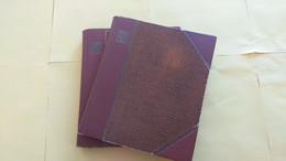 Lot N° TH 468  EUROPE Un Lot De 2 Classeurs Obl. Quelques Neufs Xx - Sammlungen (im Alben)