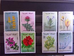 MAROC BELLE LOT FLEURS NEUF** DEPART 1 EURO - Marruecos (1956-...)