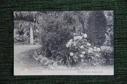 SIDI BEL ABBES - Ecole Supérieur De Garçons, Un Coin Du Jardin. - Sidi-bel-Abbes