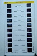 LESTRADE :   1323   MIDI  :  SÈTE - Visionneuses Stéréoscopiques