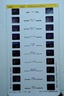 LESTRADE :   1324   MIDI  :  PALAVAS-LES-FLOTS - Visionneuses Stéréoscopiques