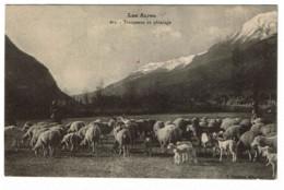 05-Hautes Alpes * 109° Rég. Territ. D'Infanterie - R.F - Au Centre: Le Lieutenant-Colonnel Command. En Violet * - Guerra 1914-18