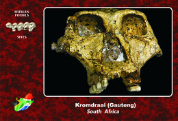 Set 2 Cartes Postales, Prehistoire, Human Fossil Sites, Kromdraai (South Africa), Paranthropus Robustus - History