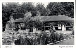 CPA Osnabrück In Niedersachsen, Tiergarten, Kaffeehaus - Altri