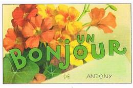 92  UN BONJOUR   DE ANTONY  CPM  TBE  VR902 - Antony
