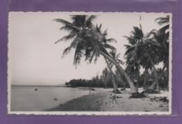 ILE MAURICE-CPSM POINTE AUX SABLES - PORT LOUIS - Mauritius