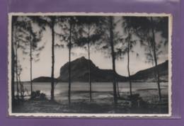 ILE MAURICE-CPSM LE MORNE BRABANT - Mauritius