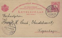 Ganzsache Mit Privatem Zudruck - Budapest 1897 Föposta > Oberstabsarzt Dr. H. Laub Kopenhagen - Kongress Hygiene - Medicine
