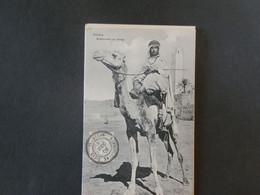 A13/509  CP SAHARA 1906  TIMBRE FRANCE 1C BLANC OBL. IN-SALAH OASIS SAHARIENNES - Brieven En Documenten