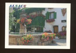 Eguisheim (68) : Route Du Vin - Ancienne Fontaine Près Des Remparts - Other Municipalities