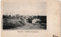 Ransart. - Chemin De Capitonne. - Charleroi