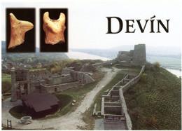 Devin. Nadvorie Sterdného Hradu. Hlava Kultového Konika (15. St. Pred Kr.). Castle. Château. - Slovacchia