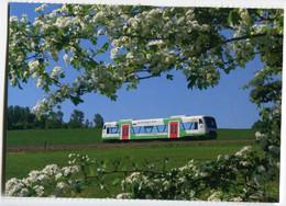 Regio-Shuttle Der Erfurter Bahn EB,bei Wurzbach, Ungelaufen - Trenes
