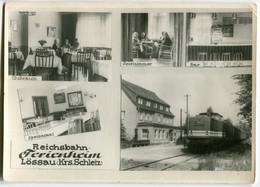 Diesellok V100 029 Am Reichsbahn Ferienheim Lössau (Kreis Schleiz), Gelaufen - Trenes