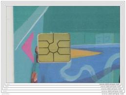 F1225C COLL-1 GEM 12/02 *** BARETTES DE PUCE *** Les Scans Representent La Carte En Vente *** (A3-P1) - 2002