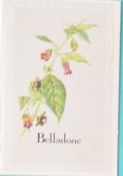 Petit Calendrier De Poche 1985 Création Engelhard Plante Belladone Pharmacie St Saint Baldoph Savoie - Klein Formaat: 1981-90