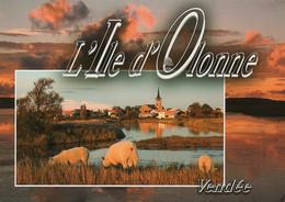 CPM - C - VENDEE - ILE D'OLONNE - FIN DE SOIREE SUR L'ILE D'OLONNE - MOUTON - Autres Communes